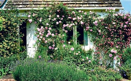 """Monk's House, the garden that inspired Virginia Woolf. In a letter to a friend, she writes: """"I sleep and dress in full view of the garden."""