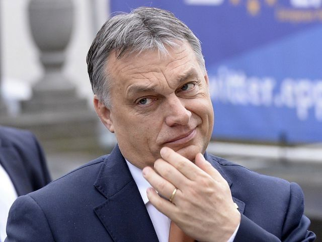 ORBAN: 'THE PEOPLE OF EUROPE ARE BEGINNING TO WAKE UP.