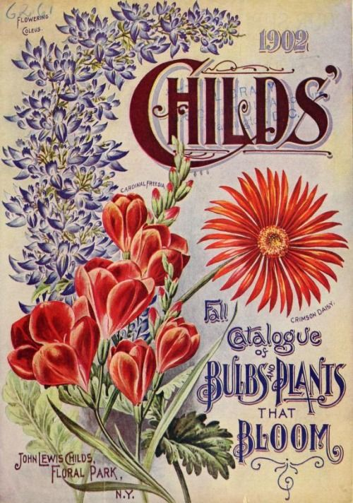 Cover Of U0027Childsu0027 1902 Fall Catalogue Of Bulbs And Plants That Bloomu0027  .  Rare FlowersVintage FlowersSeed CatalogsGarden ...