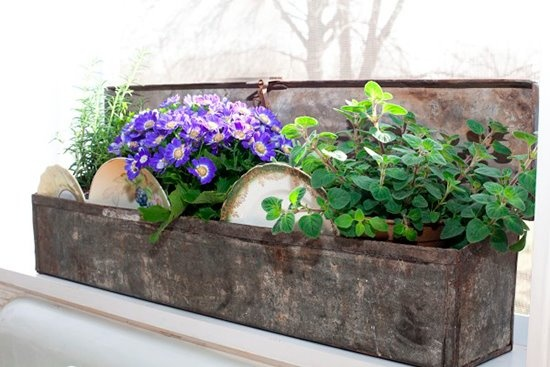 We TOTALLY love this HERB planter for the KITCHEN...dishes and ALL!