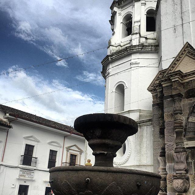 #elpatodetriego en #Popayán, #Colombia.