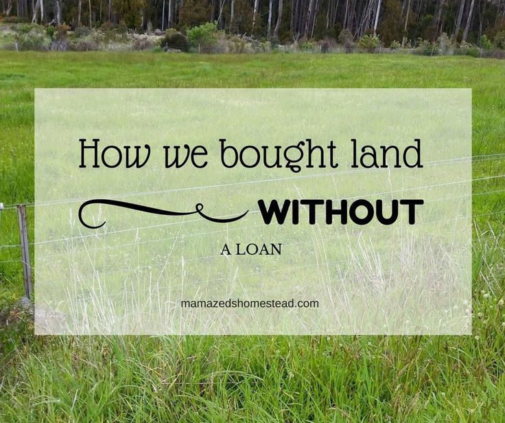 2 and a quarter acres. Sometimes I still have to pinch myself when we're looking at the land. I've been dreaming of having land of my own for a very long time. I would read through my homesteading books, draw plan after plan about where I would put everything. Now it's finally here and I'm …