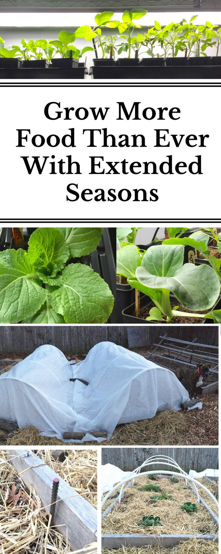 Ready to take your garden to the next level? We did in just two easy steps last winter and it totally transformed our gardening game allowing us to grow more food than ever with extended seasons!