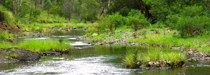 Camping Sites South East Queensland - Gordon Country