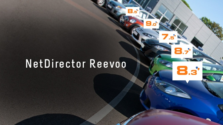NetDirector Reevoo