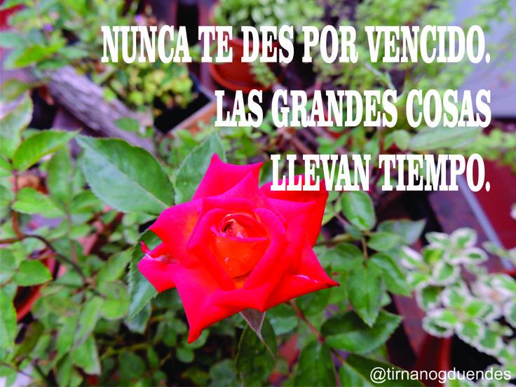 Para pensar.... www.tirnanogduendes.com.ar