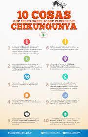 Resultado de imagen para sintomas chikungunya