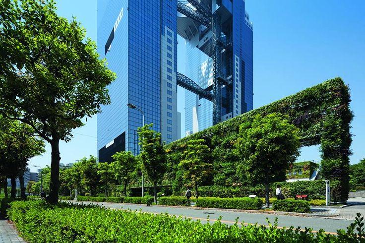 """Muro della Speranza, Tadao Ando, New Umeda City, Osaka. Immagine tratta dall'articolo: """"Le pareti in fiore della speranza"""", allegato green, Domus 983 settembre 2014. Foto di Shigeo Ogawa"""
