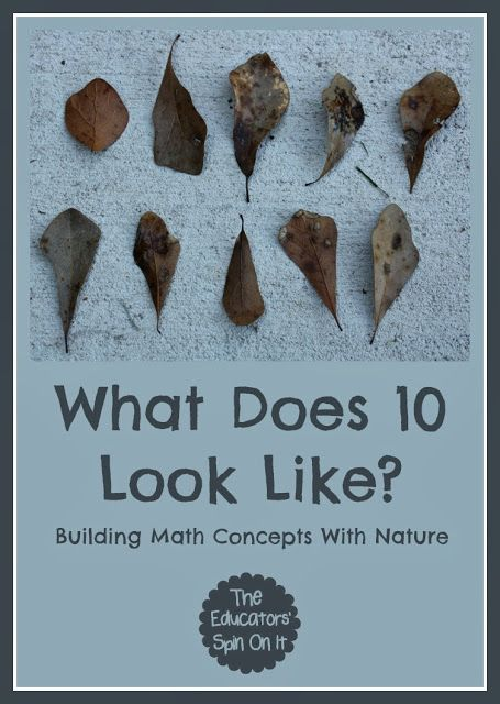 The Educators' Spin On It: Building Math Concepts with Nature (Playful Preschool)