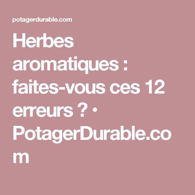 Herbes aromatiques : faites-vous ces 12 erreurs ? • PotagerDurable.com