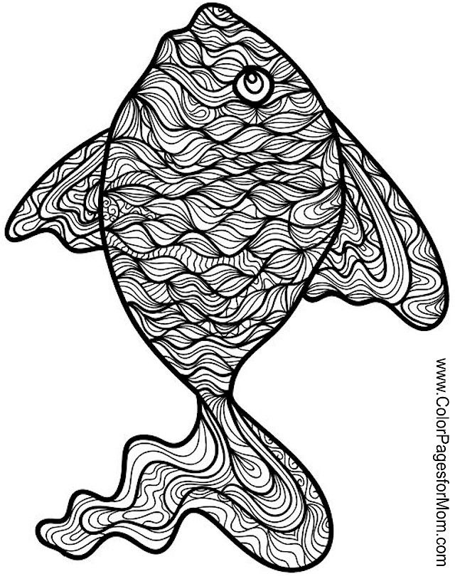 55 best images about fish on Pinterest  Coloring sheets Japanese