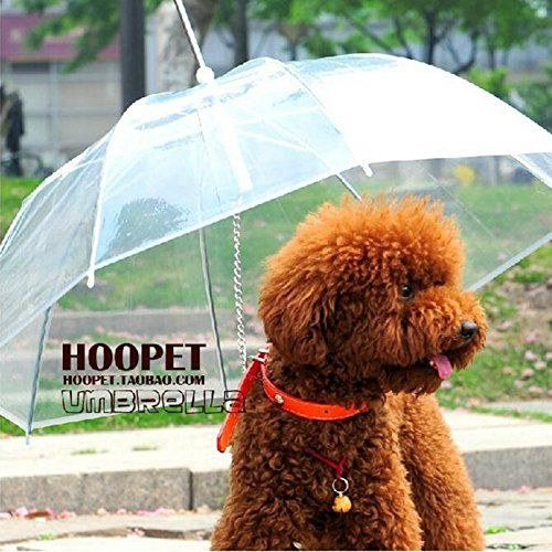 Transparent PE Film Pet Umbrella,Pet Raincoat,Small Tactic Dog,with A Dog Chain * Don't get left behind, see this great dog product : Dog coats