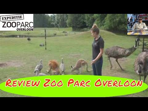 Review Zoo Parc Overloon