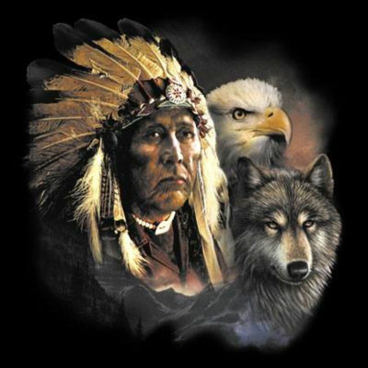 Indian Animals Wolf Eagle Men's Black Native American Indian T-Shirts