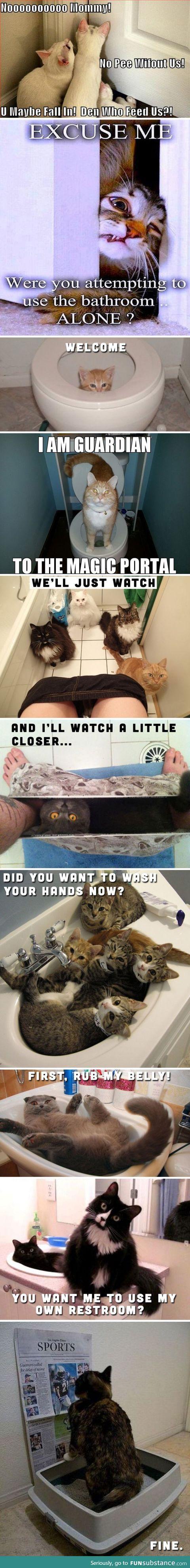 CATS & BATHROOMS