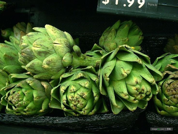 Using Artichoke Extract in your Nootropic Stack