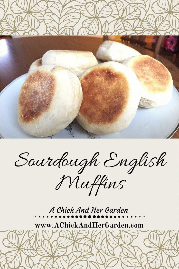 Make your breakfast that much better with homemade sourdough English Muffins!