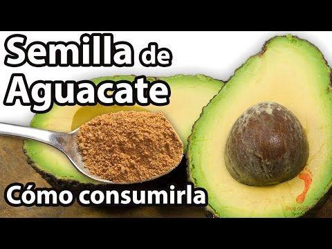 Semilla de Aguacate - Beneficios y cómo consumirla - YouTube