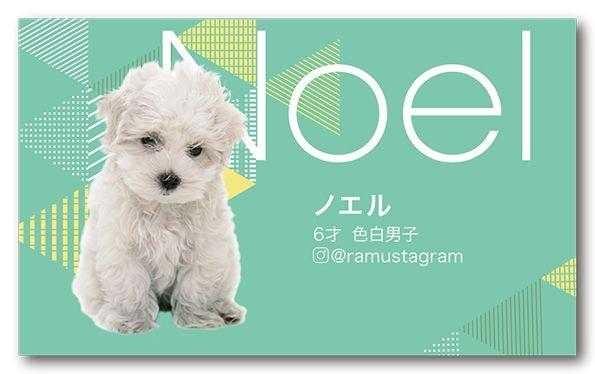 ペット名刺 犬デザイン 横型014<br> オーダーメイド 犬グッズ (1個50枚入)