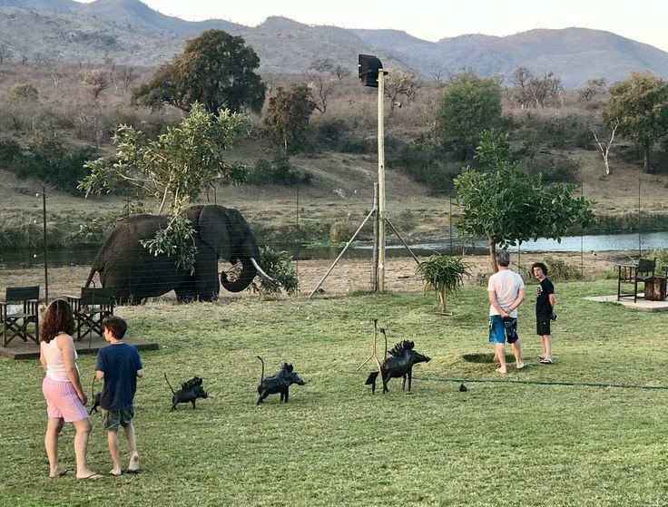 #elephant visiting #kambakurivetlodge