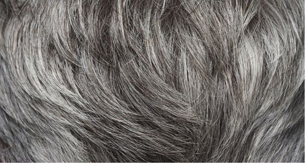 Do You Have Gray Hair Here Is How You Will Get Back Your Natural Hair Color!