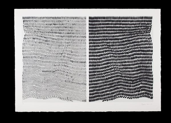 Mute 28, 2013 [etching on arches paper, diptych on single sheet of paper, 40 × 55 in  101.6 × 139.7 cm] https://artsy.net/artwork/francisca-sutil-mute-28