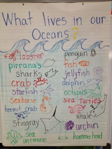 I love teaching about the Ocean during May. It gets me and my students excited about the upcoming summer time fun! The ocean is so magical! Here are some fun crafts that we made to help develop voc…