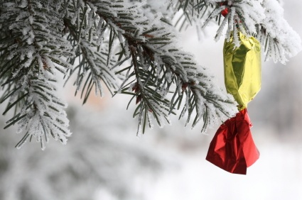 Hungarian Christmas candy on tree