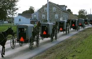 Image detail for -NICKEL MINES, PA - OCTOBER 05: Young Amish children ride in the back of a buggy during a funeral procession for one of the Miller girls October 5, 2006 in Nickel Mines, Pennsylvania. On Monday a milk truck driver identified as Charles Carl Roberts IV entered the schoolhouse, let the boys and adults go free, tied up the girls and shot them execution style before committing suicide. Five of the girls...