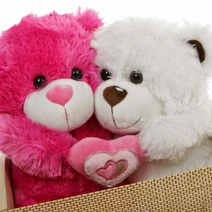 Cute Teddy Bear And Love Wallpapers Download For