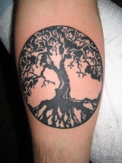 tattoo tree of life - Recherche Google