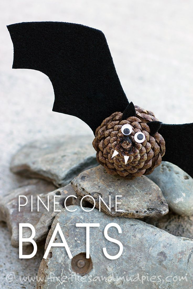 55 best BATS images on Pinterest