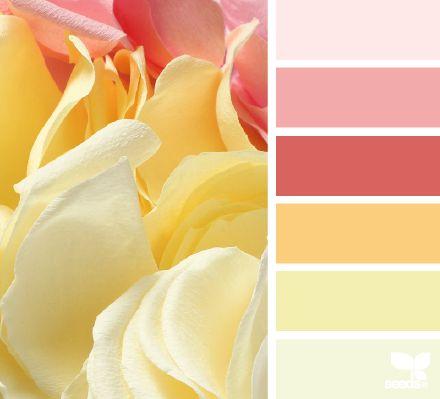Palette de couleurs pastel pour décoration de chambre fille : rose tendre,  rose framboise, jaune / orange abricot et jaune.