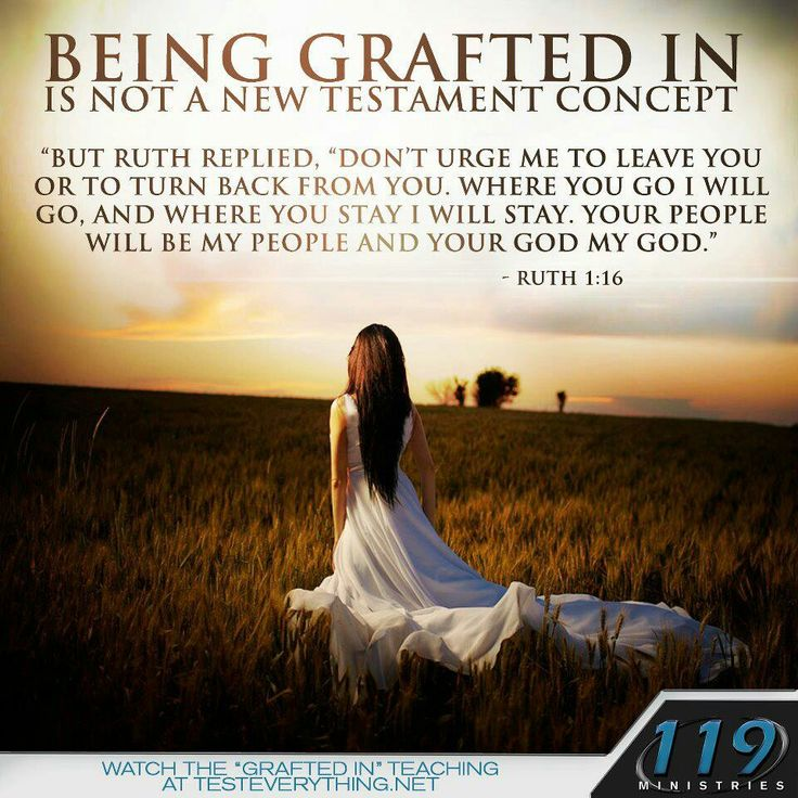 Being grafted in...hmmm. This story seems to be about the kinsman-redeemer to me, but I can see where you are coming from. The truth of being grafted in applies to many others in the O.T.
