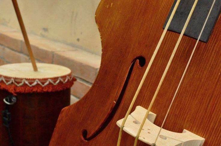 Cod. A15 Violone e Carcavella | Cantamaggio 2011