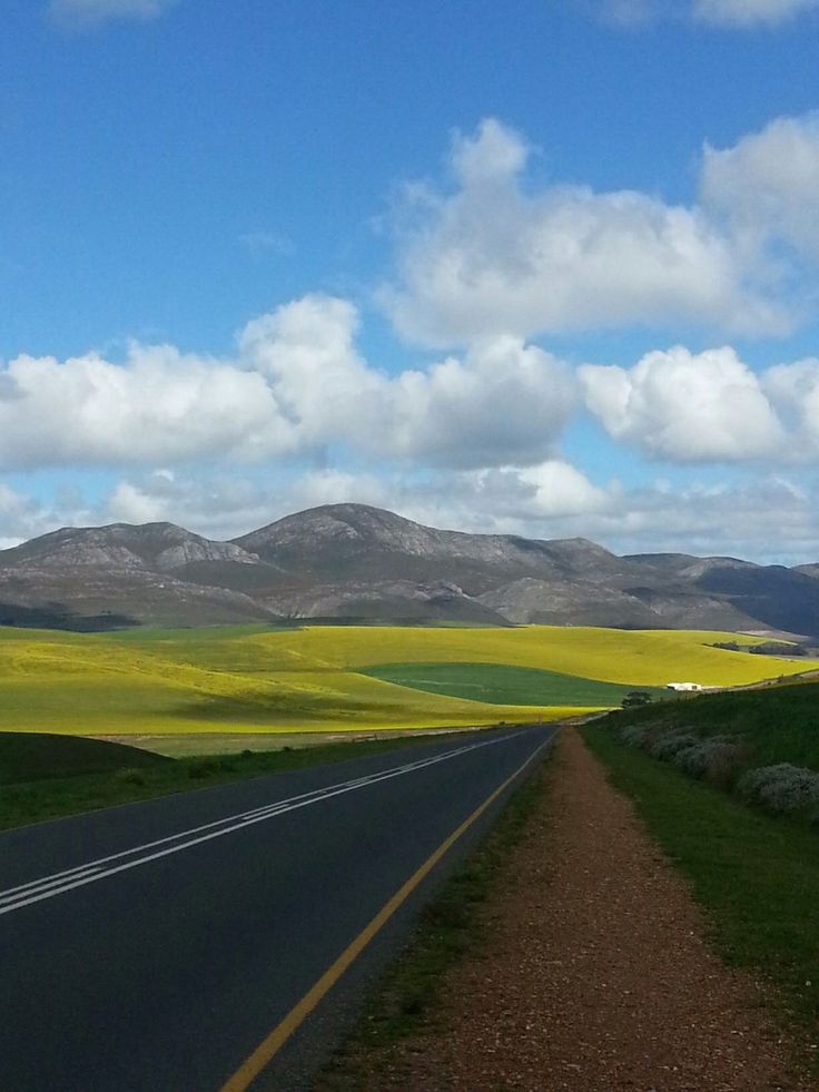 The country side in the Overberg area, Western Cape, South Africa