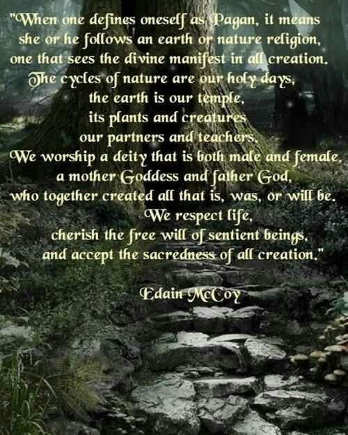 That's not exactly how I define Paganism, but it's a good general concept.
