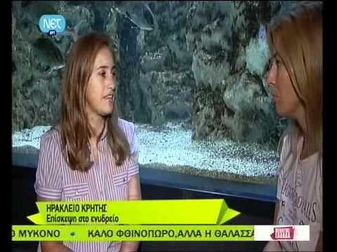 ΜΕΝΟΥΜΕ ΕΛΛΑΔΑ-Παρουσίαση Cretaquarium