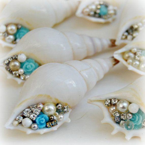 shells More