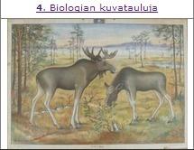Biologian kuvatauluja
