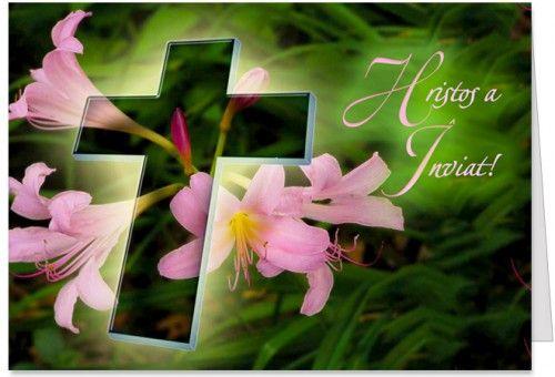 """Lumina sfanta Felicitare de Paste cu o cruce si crini roz si cu mesajul """"Hristos a Inviat! Sarbatori Pascale cu multa fericire, binecuvantate de tot ce e mai sfant pe lume, cu iubire, liniste sufleteasca, sanatate si armonie in familie. Paste Fericit!"""""""
