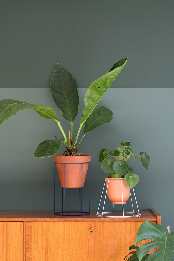 Diy plantenstandaard van oude lampenkappen
