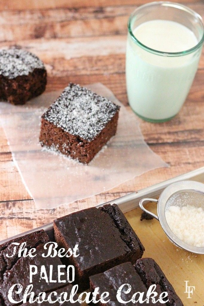 the best paleo chocolate cake recipe. So good you won't believe it's grain free, dairy free, and half the eggs of most recipes