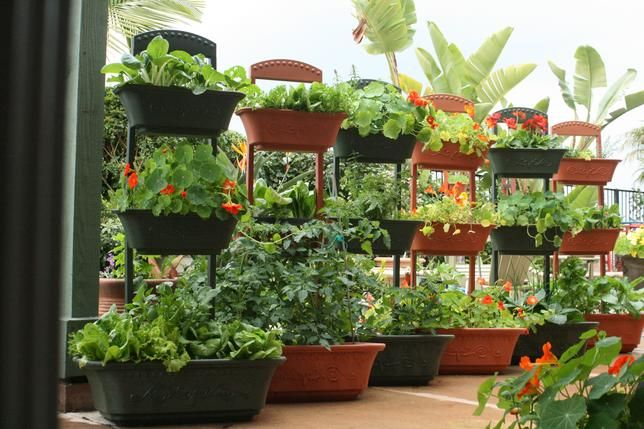 Self Watering Monkey Pots Planters Stacked Top