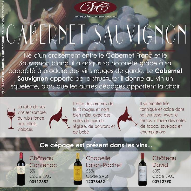Retrouvez le cépage Cabernet Sauvignon dans les vins: Château Cantenac, Saint-Emilion Grand Cru, code 00912352, et en ligne http://www.saq.com/page/fr/saqcom/vin-rouge/chateau-cantenac-2010/912352 Chapelle Lafon-Rochet, code SAQ 12078462 http://www.saq.com/page/fr/saqcom/vin-rouge/la-chapelle-de-lafon-rochet-2009/12078462 et Château David, Médoc, code SAQ 00912790, et en ligne http://www.saq.com/page/fr/saqcom/vin-rouge/chateau-david-2010/912790