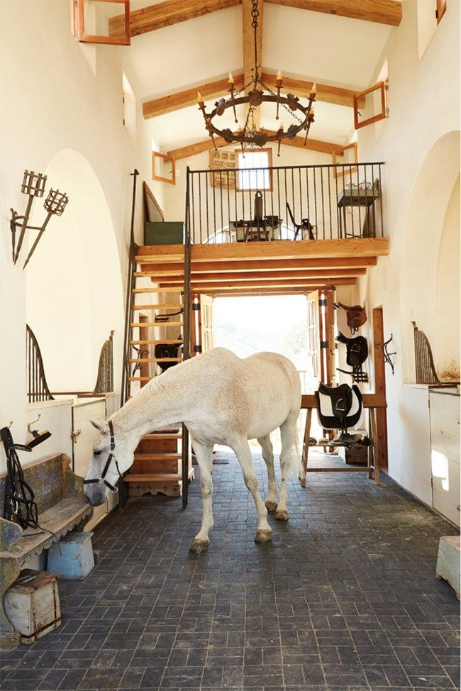 A horse inside the stunning barn! Mediterranean stable in southern California. Wow!