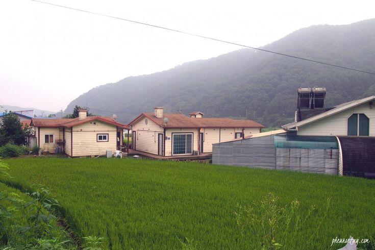 chuncheon farming experience , farm tour korea