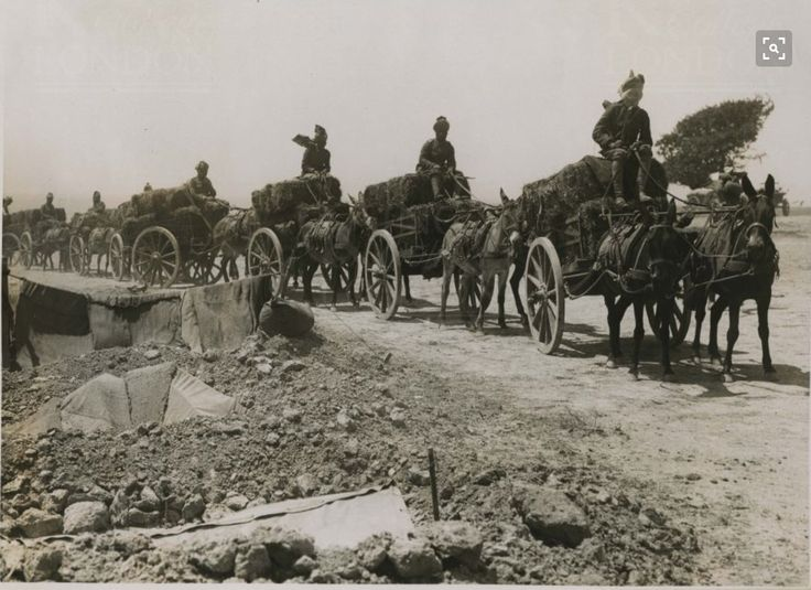 Troupes indiennes Dardanelles 1915