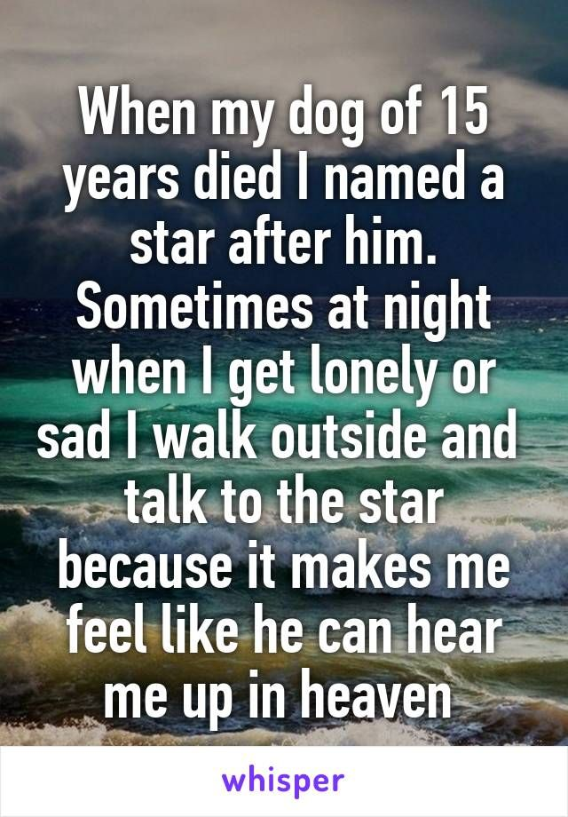 When my dog of 15 years died I named a star after him. Sometimes at night when I get lonely or sad I walk outside and talk to the star because it makes me feel like he can hear me up in heaven