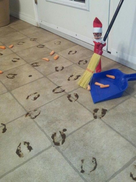 shelf elf | It was nice of Marco to sweep up the left over carrots! I hope he is ...